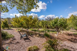 621 Nicklaus St Paso Robles CA-large-025-28-Community Garden-1499x1000-72dpi